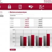 Markenumsatzanalyse Screenshot