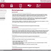 Screenshot Marketingkonzept