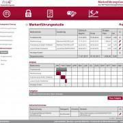 Maßnahmenplan Screenshot